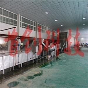 红枣清洗生产线